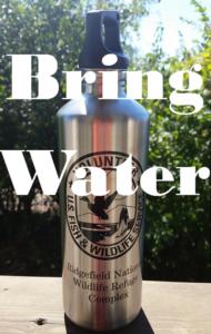 bring water